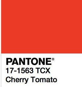 The Power of Color: Cherry Tomato Pantone with Oscar Mora on